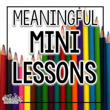 Making the Mini Lesson Meaningful